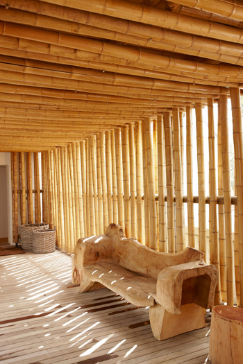 Splendide banc en bois et mur en bambou